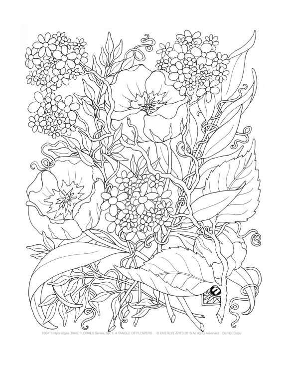 so nice adult flower coloring page