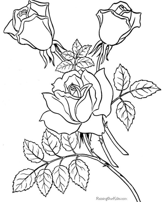 pretty adult flower coloring page