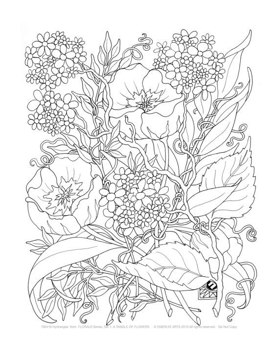 Intricate yet attractive paintings of adult flower 20 adult flower ...