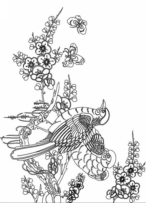 beautiful adult flower coloring page