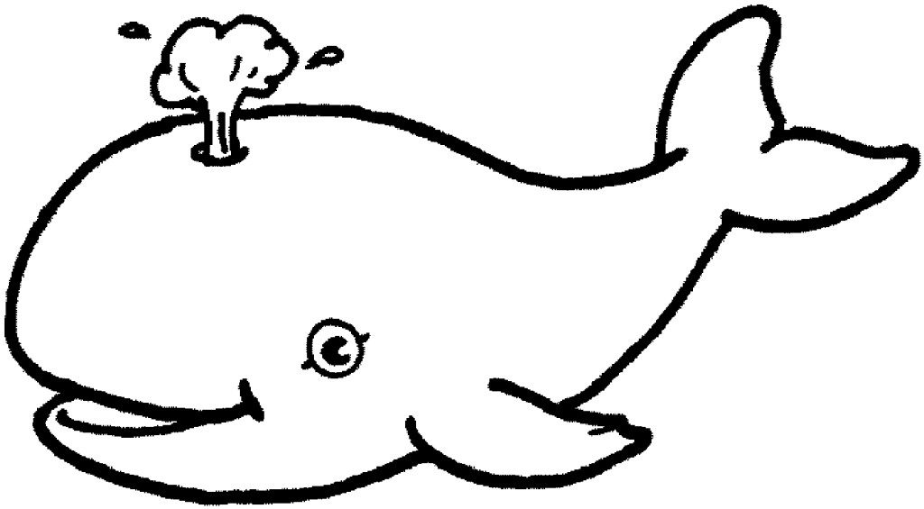 Whales are big fish you see