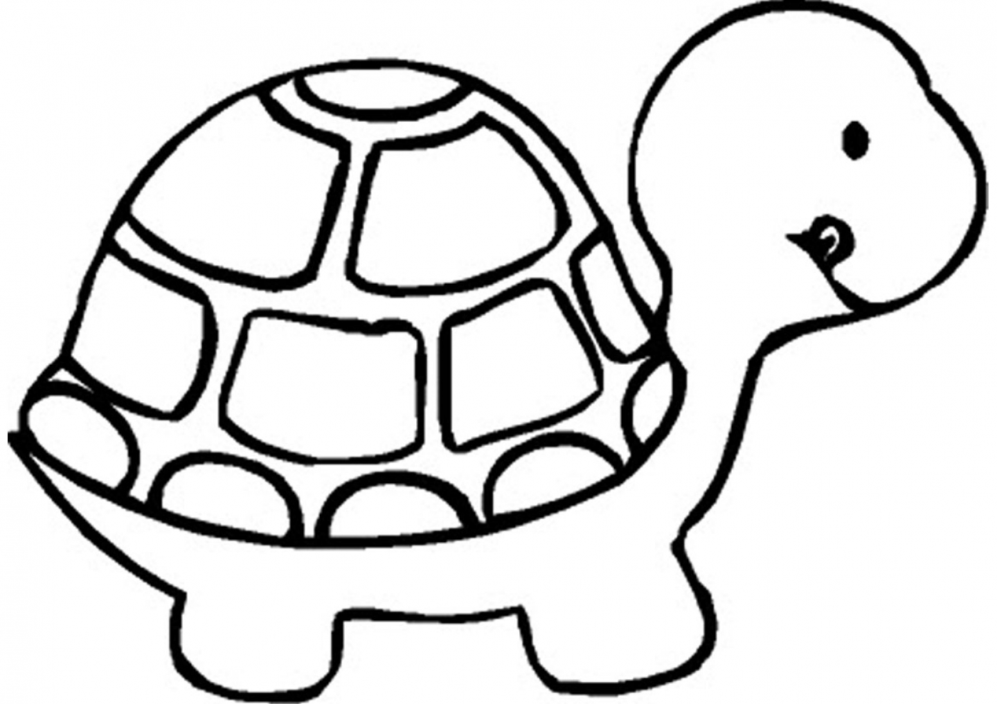 Baby tortoise coloring page