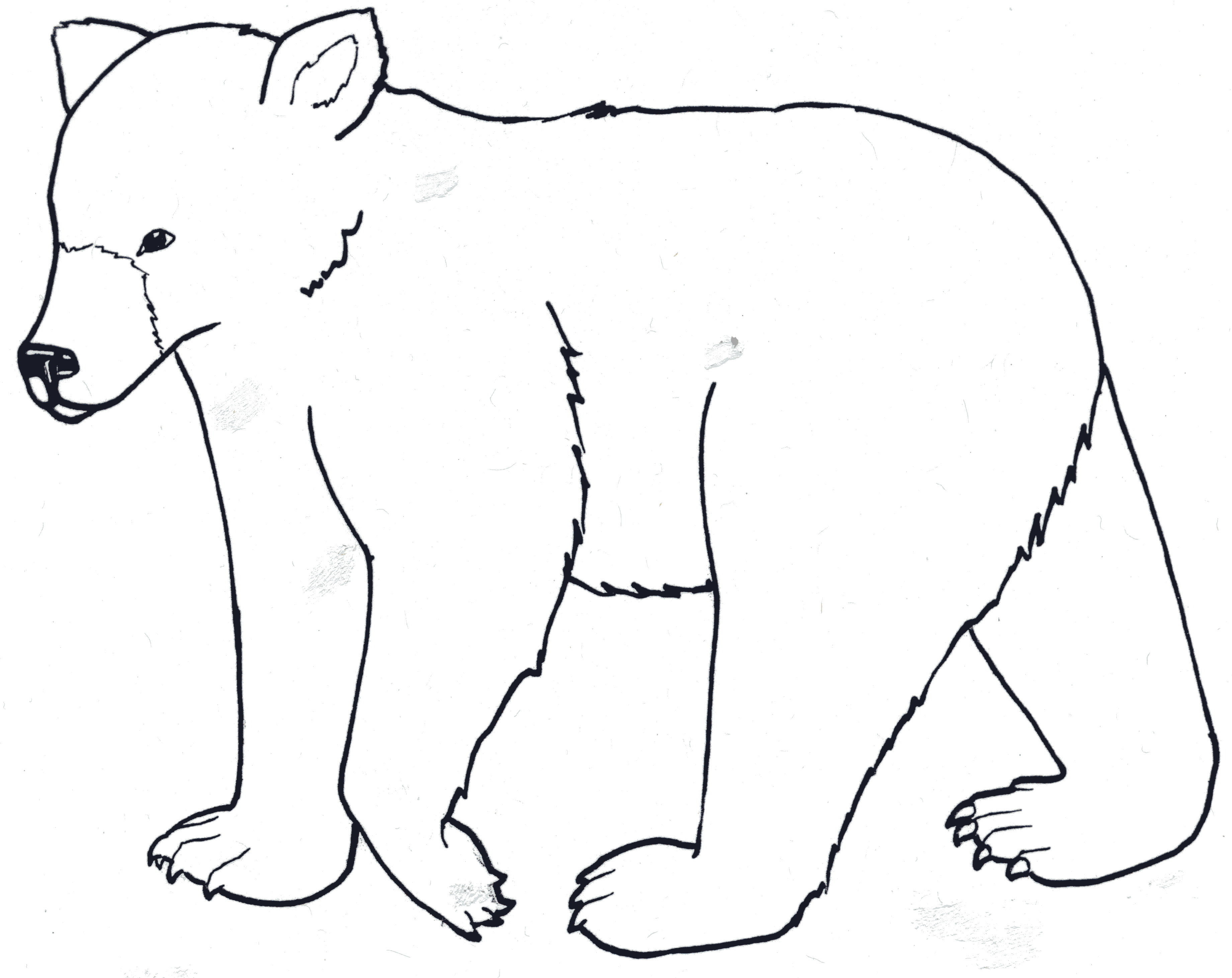 Bear loves honey coloring page