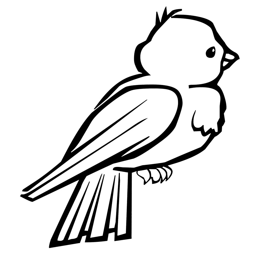 little Bird coloring page