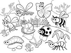 Tiny Creature Bug 20 Bug Coloring Pages Free Printables Bug Coloring Page