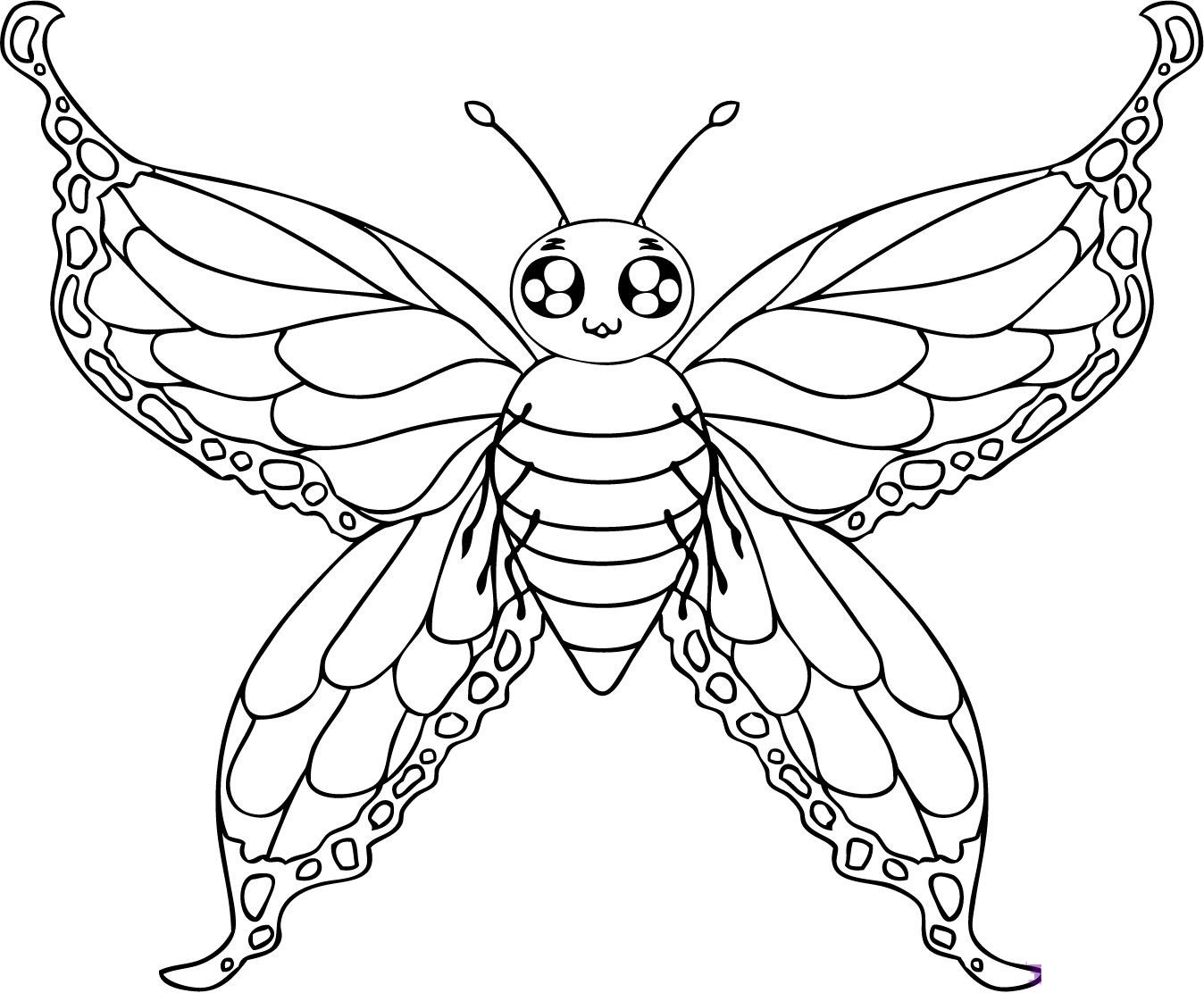 Butterfly cartoon image