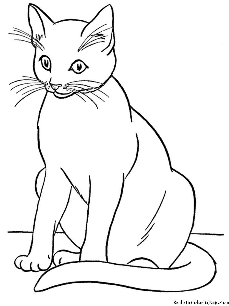 cute cat image coloring page - Cute Cat Printable Coloring Pages