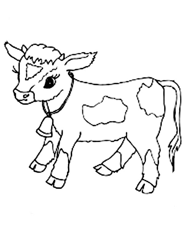 cute calf coloring pages | Best domestic animal Cow 20 Cow coloring pages | Free ...