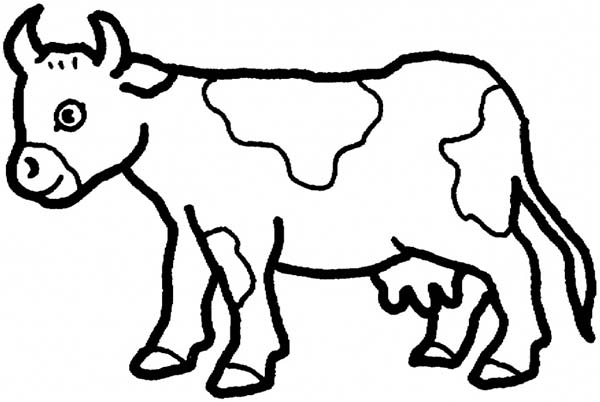 Cow image coloring page