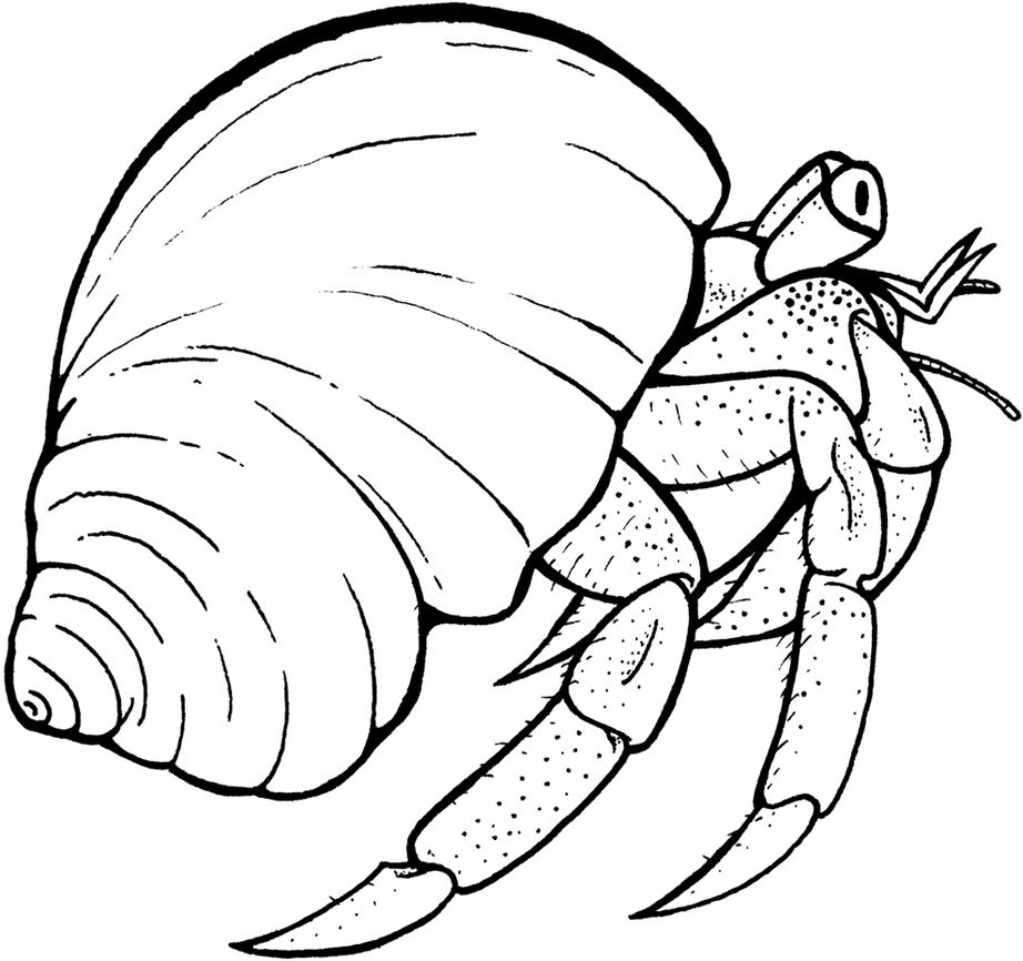 Crab claws coloring page