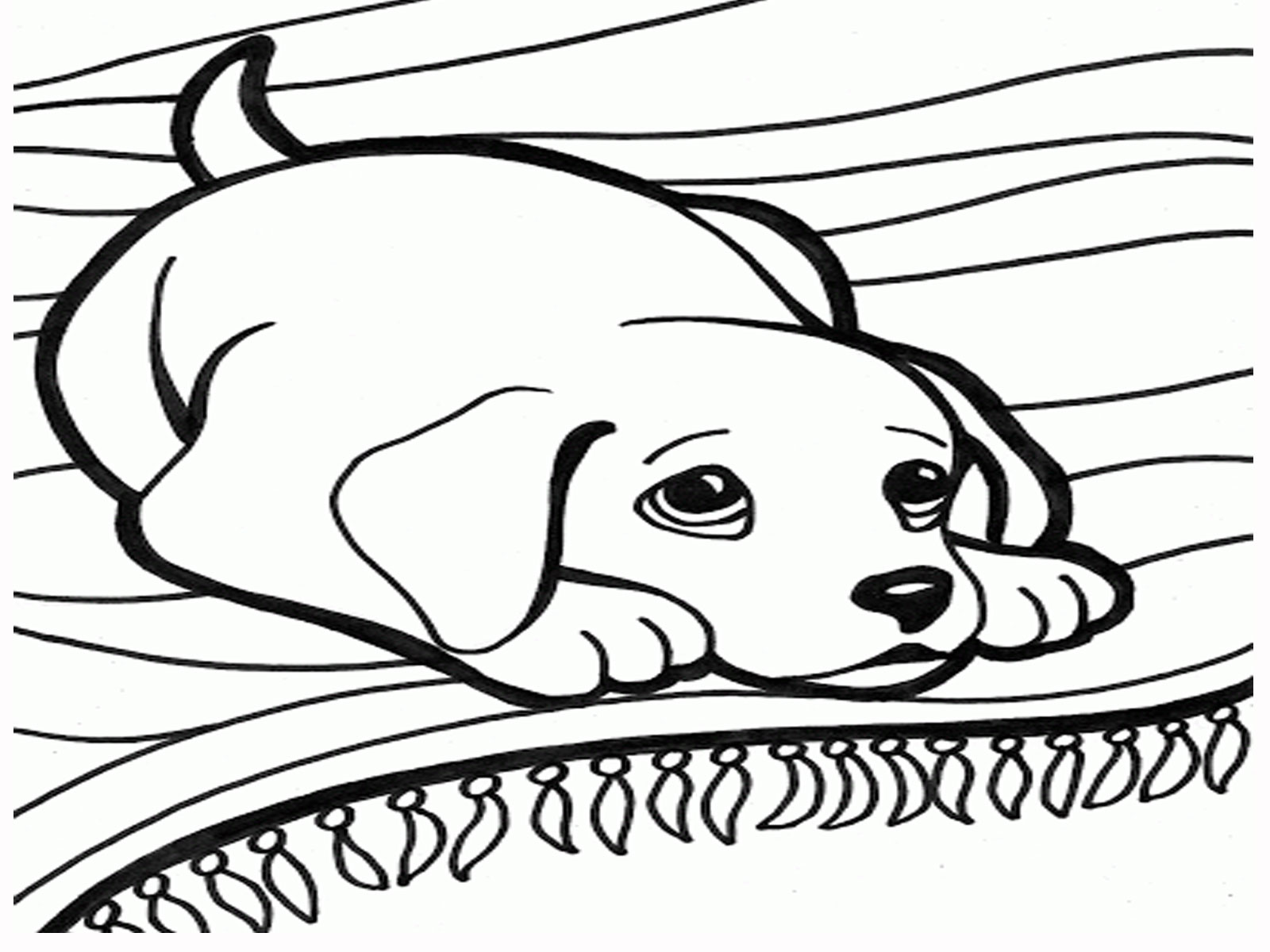 dog pictures coloring sheets