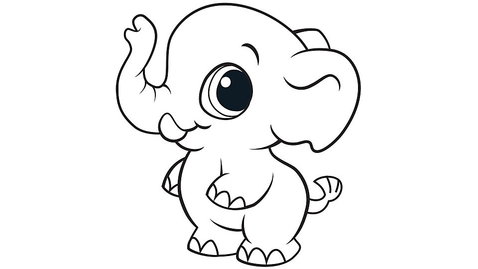 so adorable Elephant