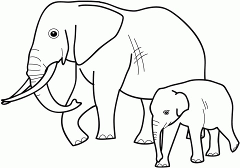 Elephants coloring page for kids