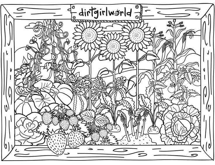 Pleasant view of some attractive Gardens 17 Gardens coloring pages ...