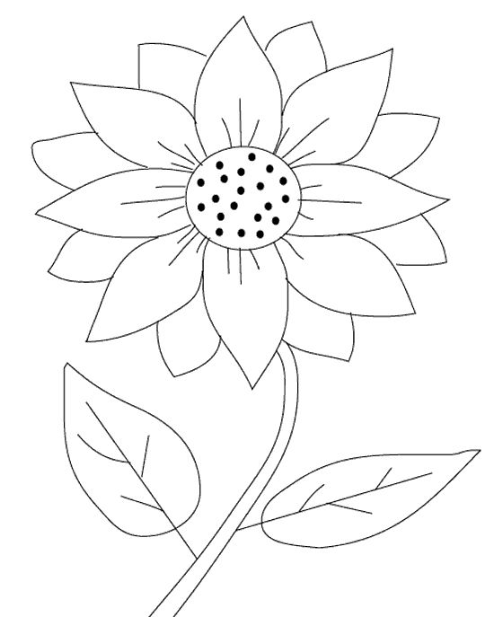 Sunflower printable page