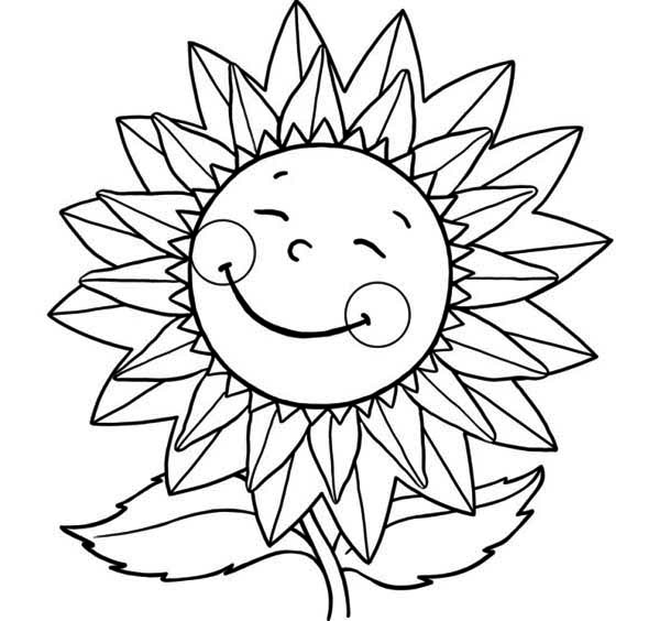 smiling Sunflower image
