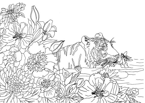 Nature Coloring Pages For Kids Free Printables