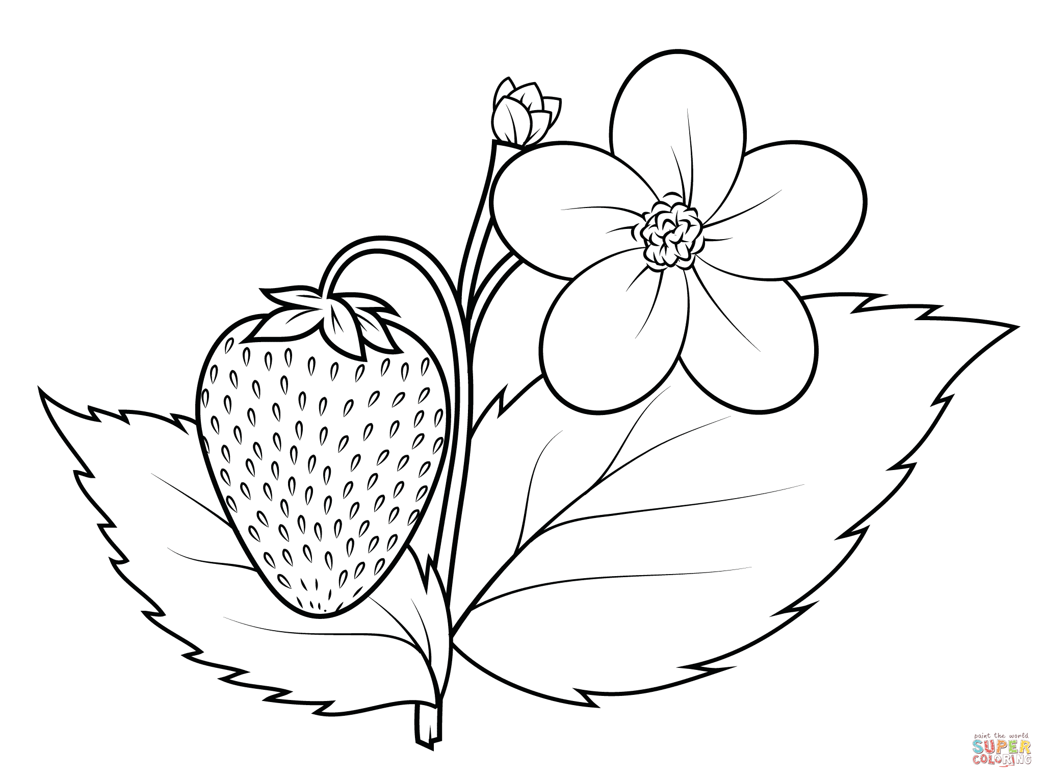 strawberry tree coloring page